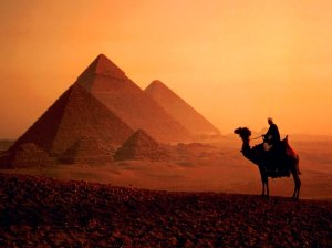 Egypt-travel-the-Pyramids-camel